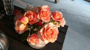Skønne roser fra haven skal der til