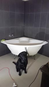 Whauu badekaret købt for 475 kr i Hjørring kunne komme ind ad døren.